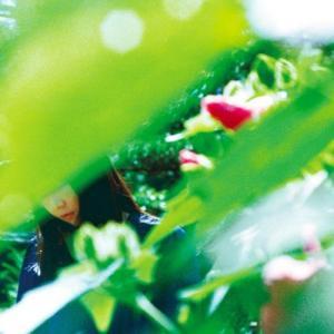 ある春の恋人