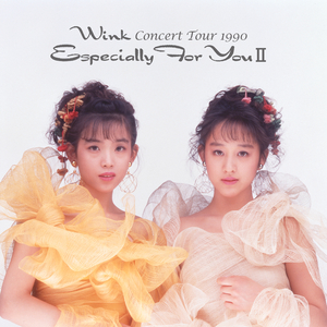 Wink CONCERT TOUR 1990~Especially For You II~